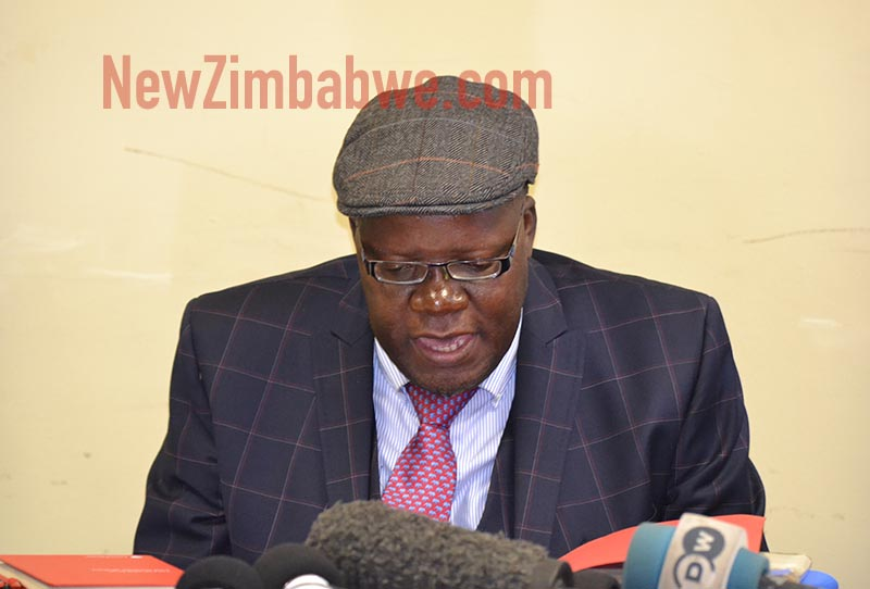 LATEST: Biti released, now safe on Zambian territory