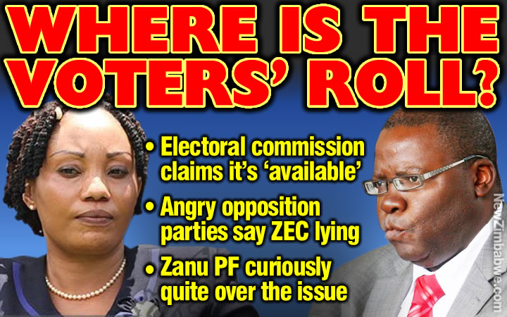 Confusion reigns over voters roll release as parties deny ZEC claims