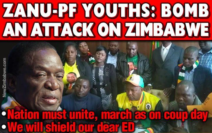 Zanu PF youths claim Zim under attack; offer themselves as human shield to protect ED