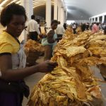 RBZ Relaxes Payment Modalities For Tobacco Growers