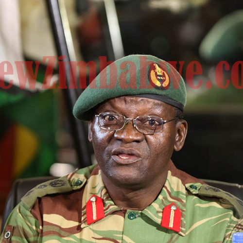ZimRights condemns army attacks on civilians