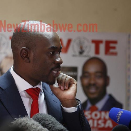 Two women in court for destroying Chamisa campaign posters