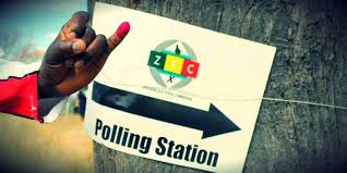 Community group in campaign for youths to throng polling stations