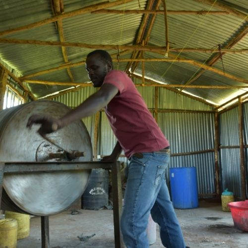 Smelly skins make for fishy fashion in Kenya