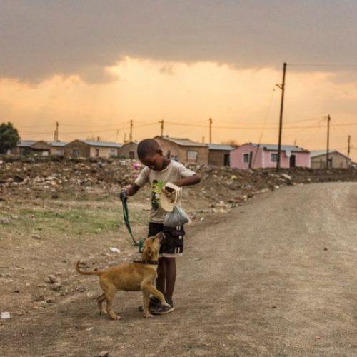 South Africa after Mandela — high hopes dashed?