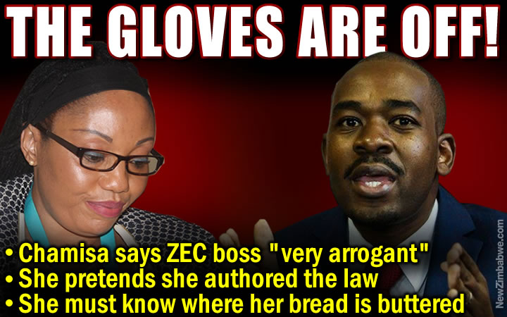 Chamisa savages Chigumba over poll reform stance