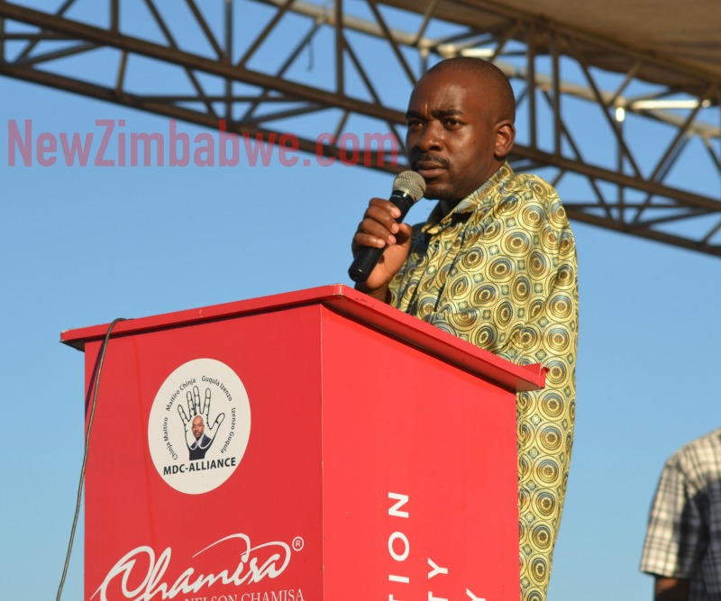 Chamisa says wants to lead transitional authority, not begging for ED pact