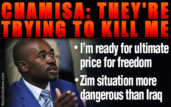 Chamisa: They are trying to kill me … I'm ready to pay the ultimate price