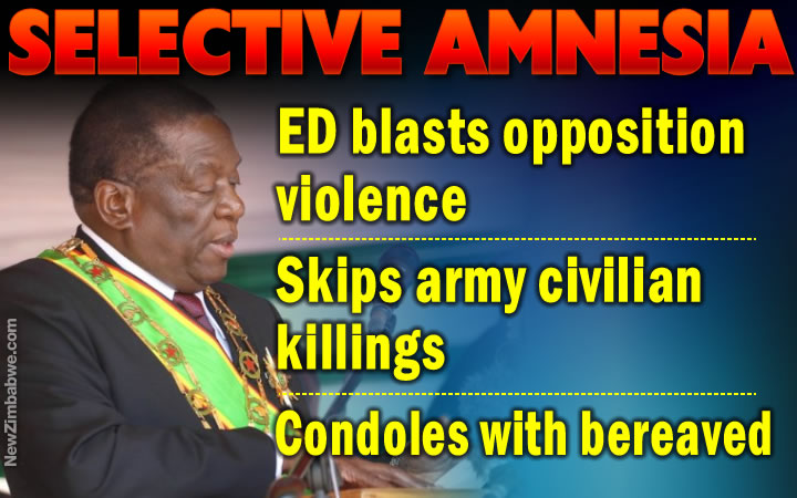 ED avoids direct army blame for civilian killings, fingers MDC