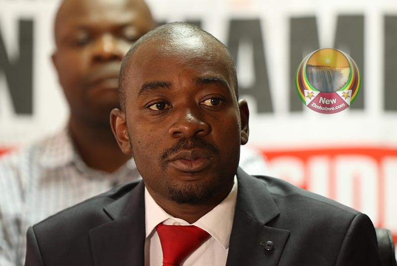 MDC: 'Barbaric' price controls will worsen shortages; Zanu PF has lost it