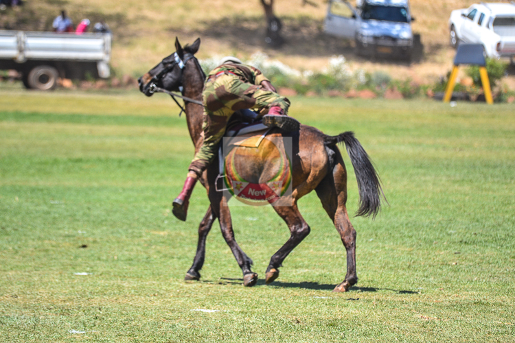 IN PICTURES: Harare Agricultural Show