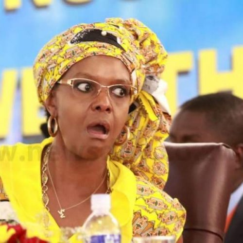 Grace Mugabe challenges truck grab case