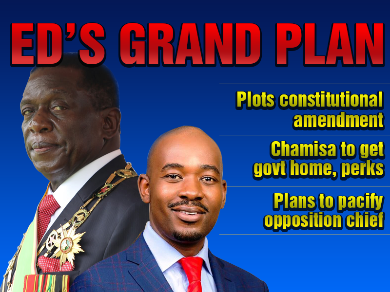 ED plots Chamisa bait, top government official reveals the details