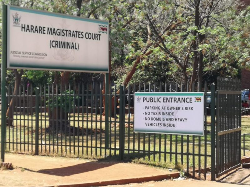 Grace Mugabe's sister further remanded as lawyer Madhuku not available
