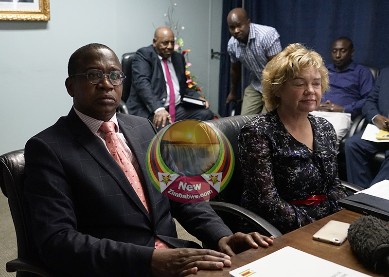 UK ambassador meets finance minister Mthuli Ncube; envoy expresses concern over violence, poverty