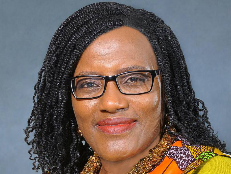 Finance minister fires entire ZIMRA board