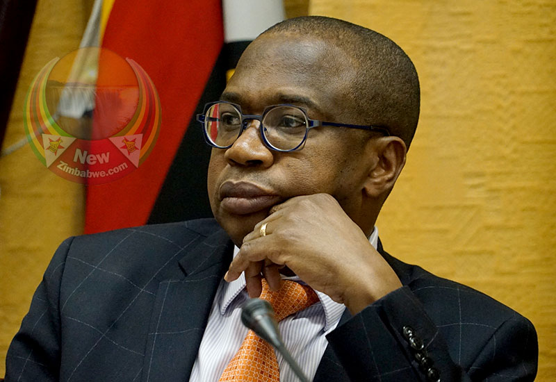 Biti blasts gallivanting Mthuli as Zim burns; finance minister in New York