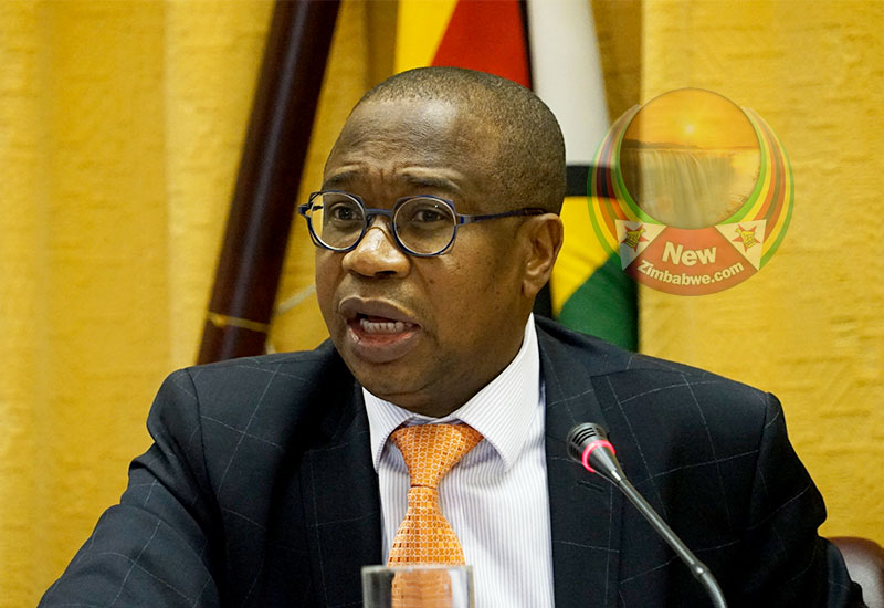 Biti, Mthuli Ncube in battle of wits over failing economy