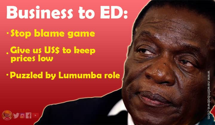 Zim business confront ED over imports, policy discord and Lumumba