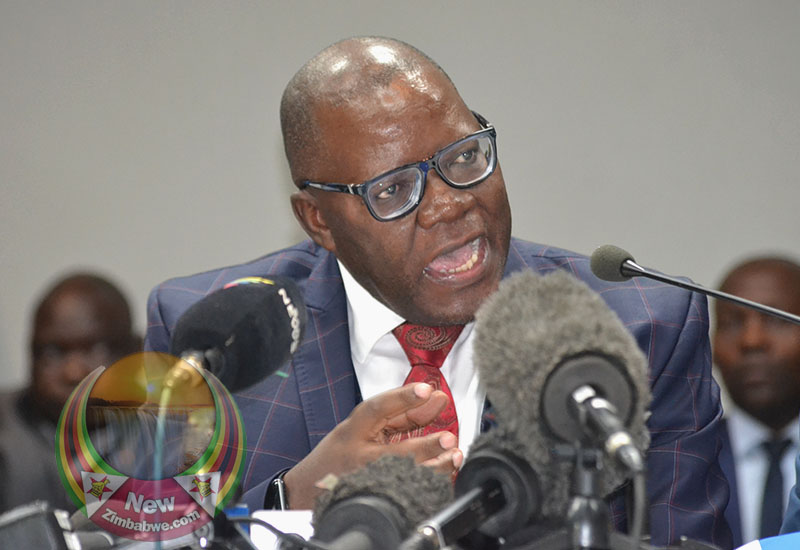 Govt Taxes A Burden On Hard-Hit Zimbabweans – Biti
