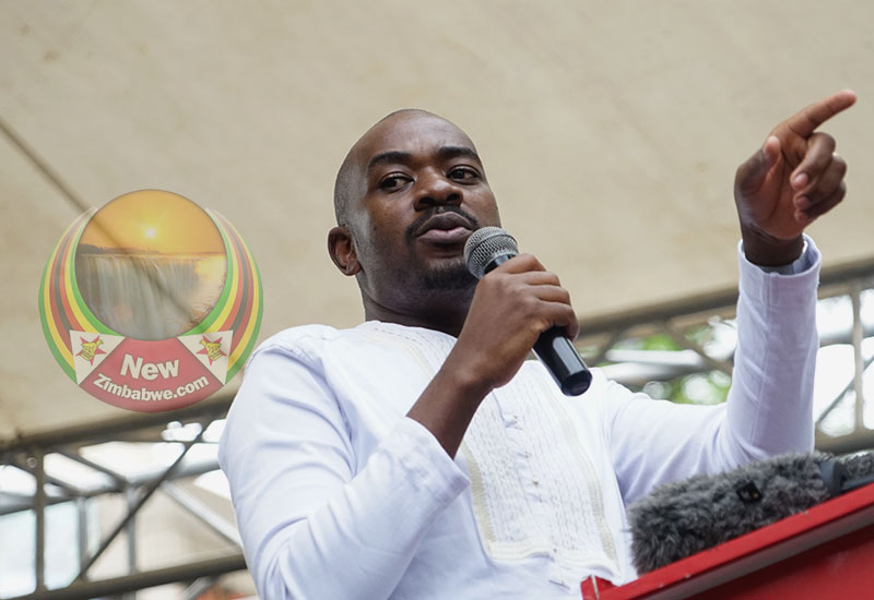 Chamisa says open to challenge at congress; warns Zanu PF meddlers