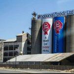 Innscor Records Recovery As Economy Stabilises