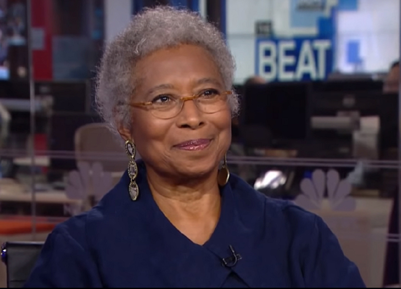 Author Alice Walker criticised for support of writer's book