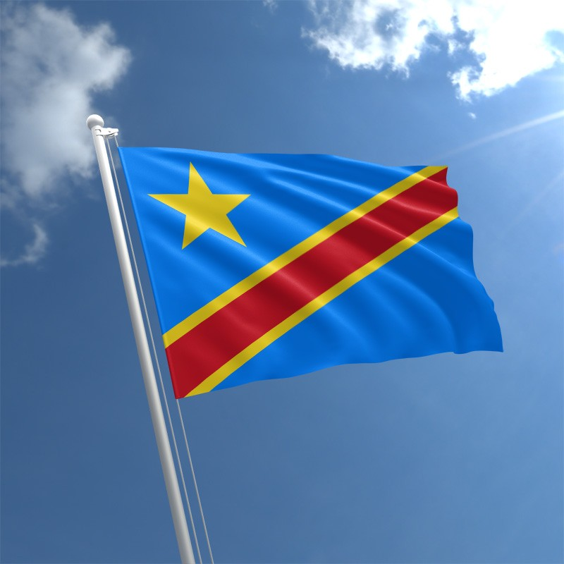 DRC election panel 'may postpone vote for a week'