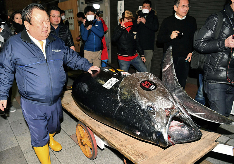 One fish goes for $3 million at first 2019 sale at Tokyo market