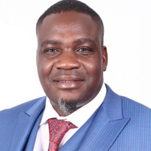 MDC secretary general Hwende in High Court freedom bid