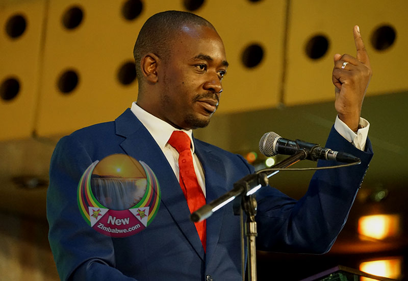 Chamisa mortgaging MDC to Zanu PF's G40, says MDC pressure group