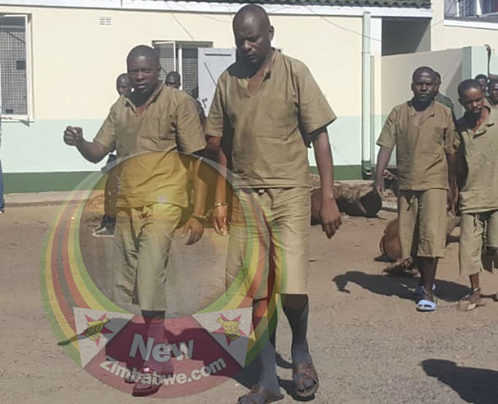 Treason accused Kwekwe MDC MPs freed after arrest on fresh charges