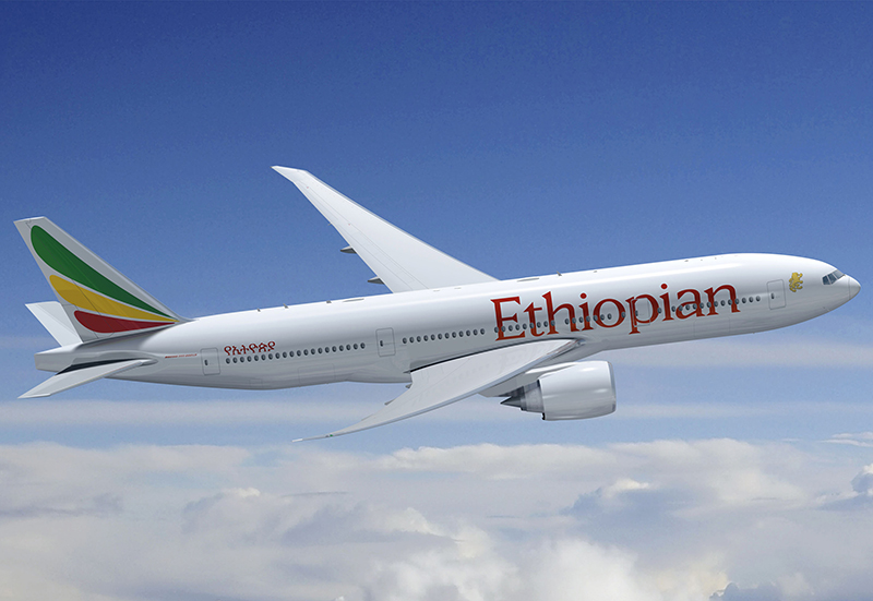 Ethiopian Airlines Boeing 737 pilots 'could not stop nosedive'