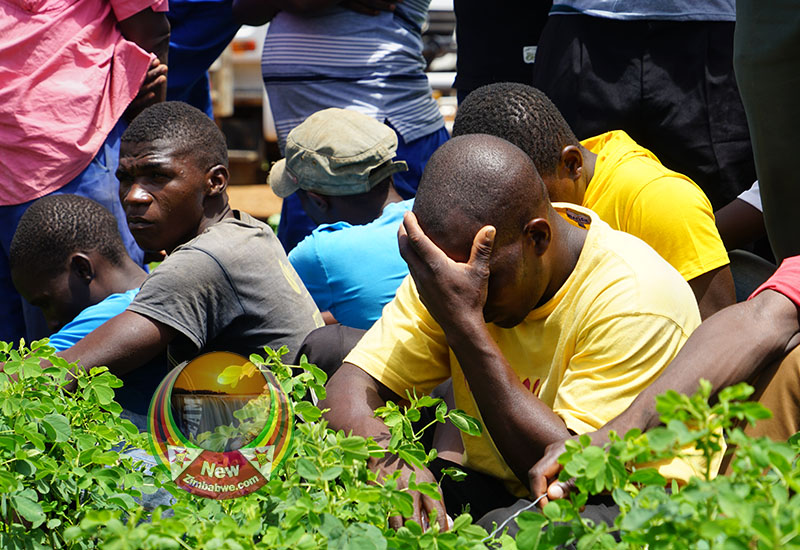 Artisanal miners claim over 100 colleagues dead in Battlefields mine disaster