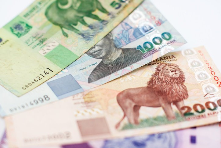 Tanzania suspends leading newspaper over currency report
