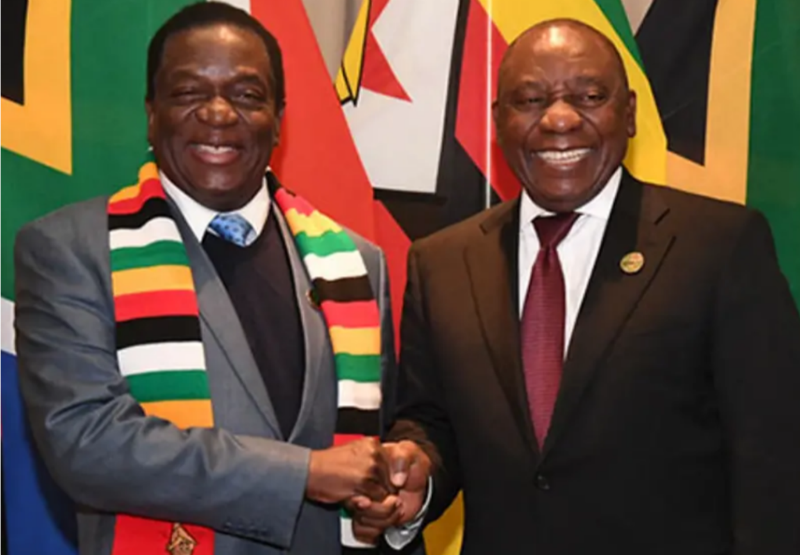 Malema: Mnangagwa, Ramaphosa 'same WhatsApp group'