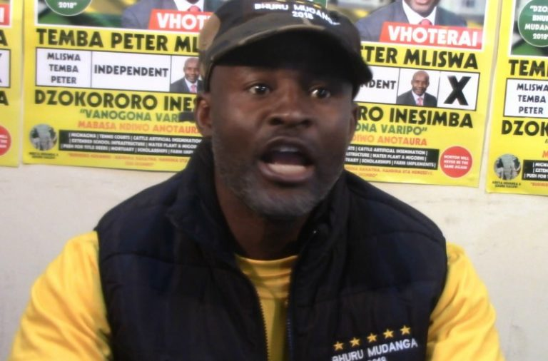 Mnangagwa's rhetoric not enough to attract investment