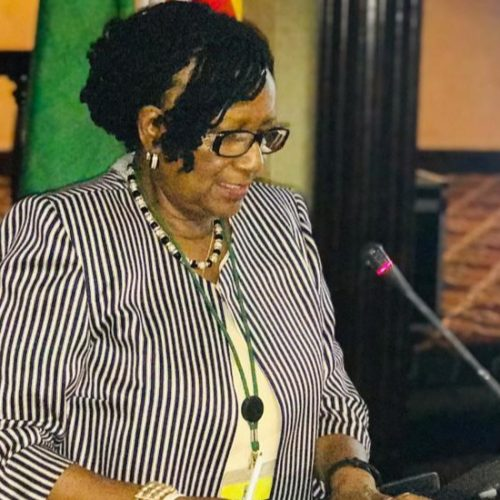 Mupfumira's freedom bid hits a brick wall