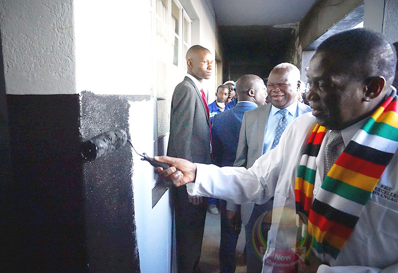 Mnangagwa Matapi Flats tour in pictures