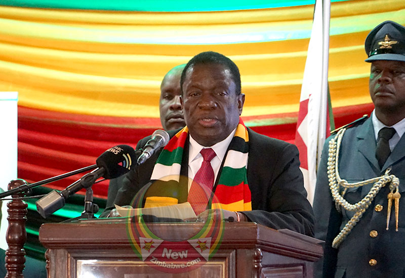 Mnangagwa blasts CITES ban on wildlife trade, says Zim sitting on US$600 ivory
