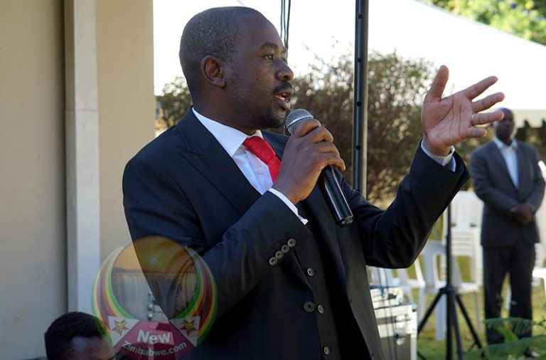 Imprisoned Chief Ndiweni remains resolute: Chamisa after prison visit