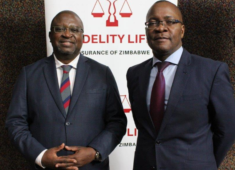 Fidelity Life Assurance's Malawi Unit Hedges Group against hyperinflation