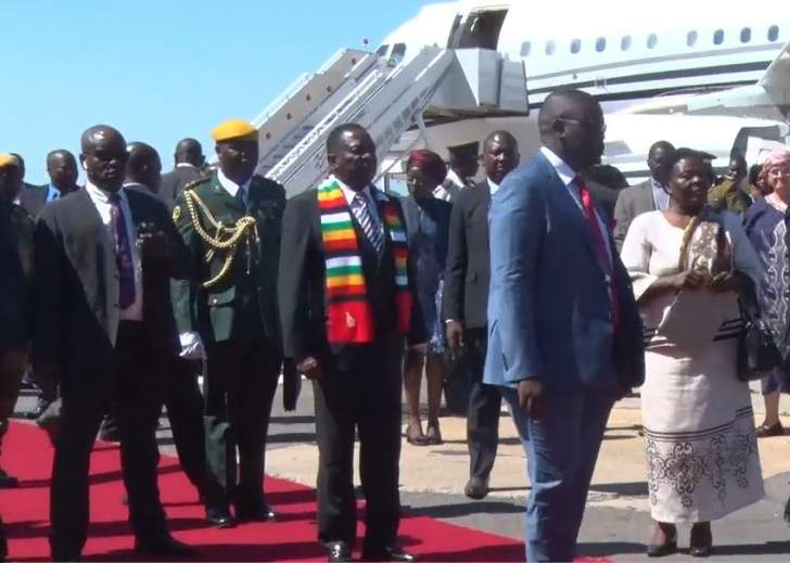 Chamisa slams ED for lavish jet hire while doctors strike for wages