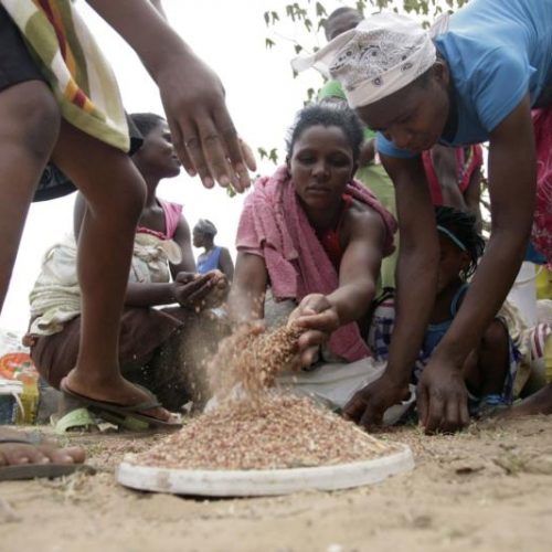 Hungry 4.1 million Zimbabweans to receive food aid