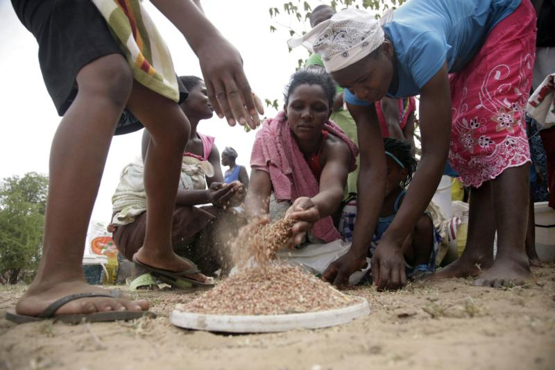 Zhombe villagers fret over imminent drought, biased food aid distribution