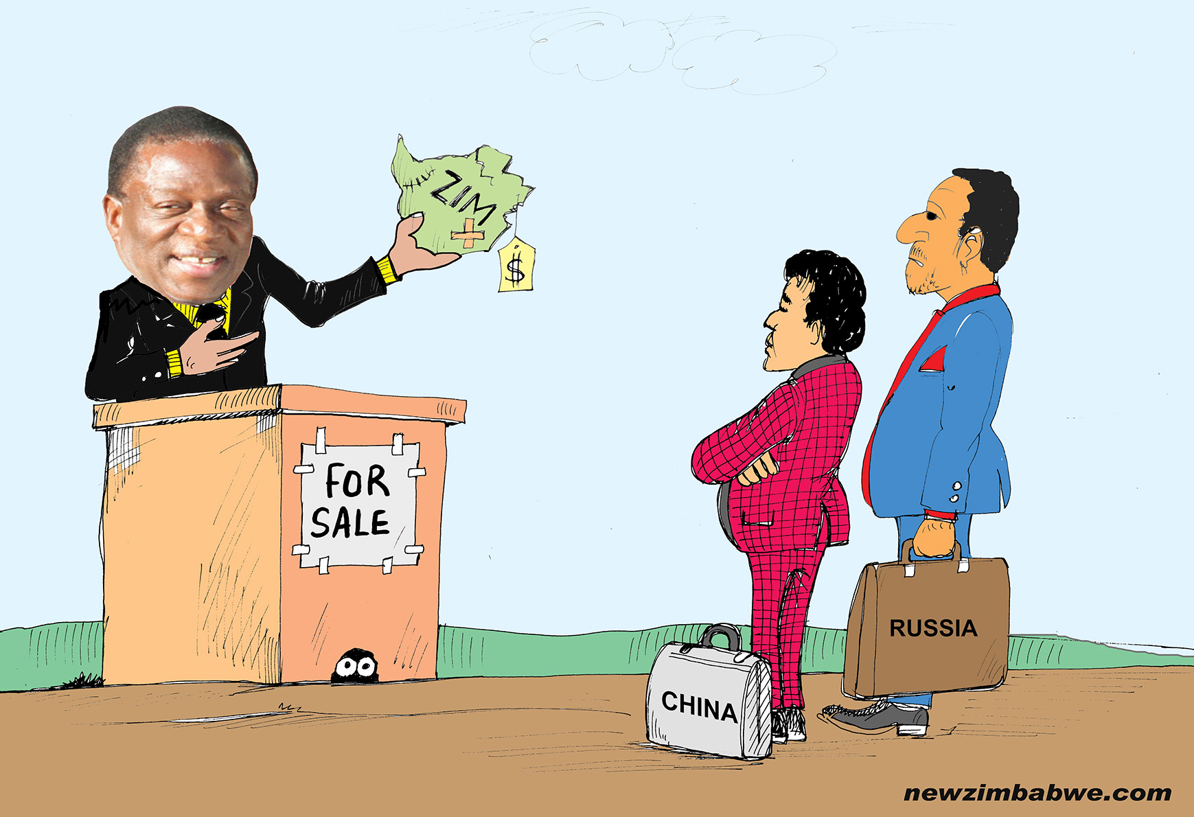 Zim for sale