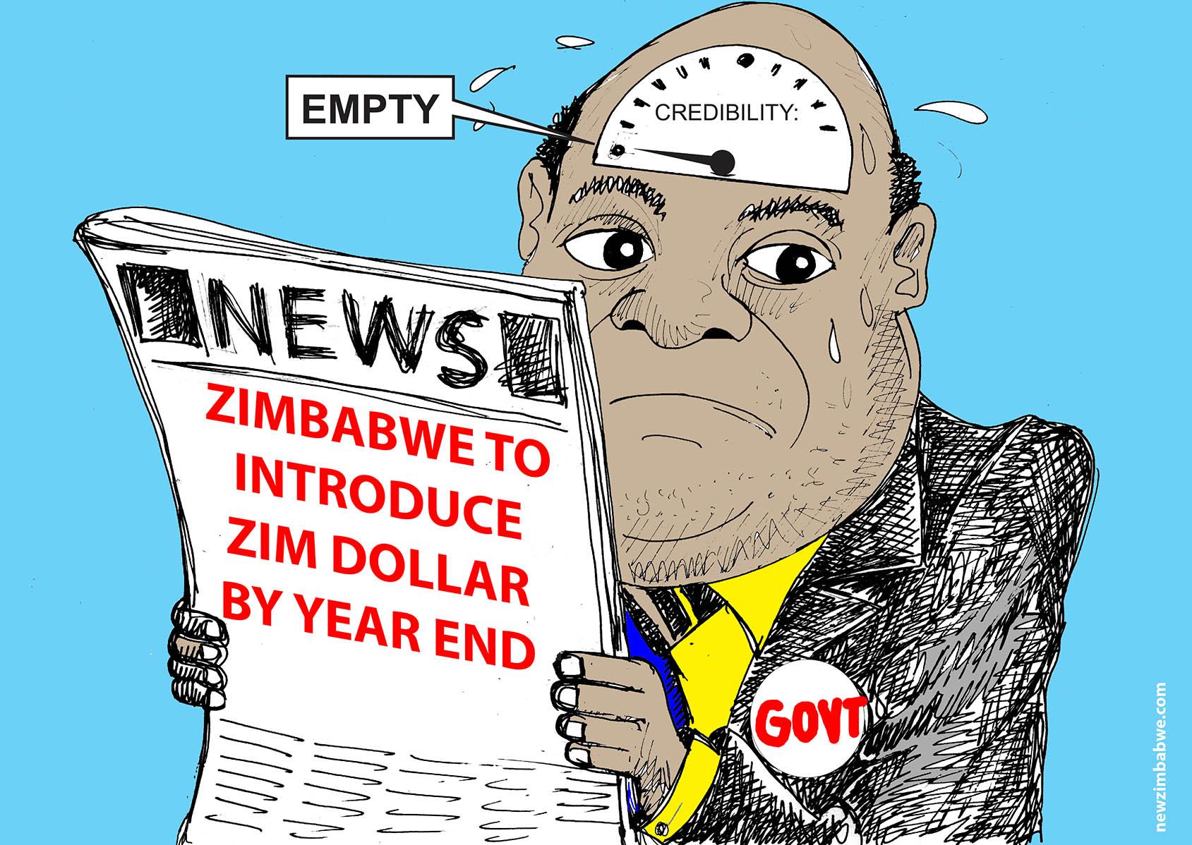 Zim to introduce new Zim Dollar