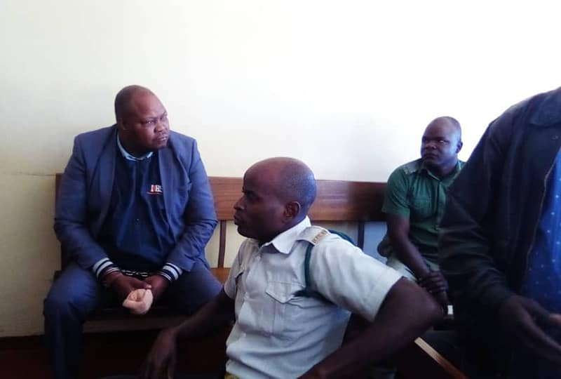 Two more weeks in jail for Sikhala, as MDC deputy chair is remanded in custody