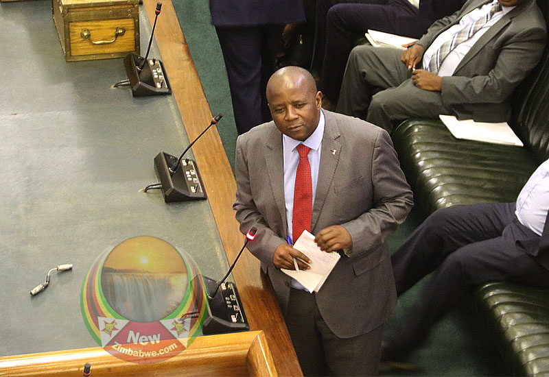 Corrupt Cartels Have Captured Local Councils – Zanu PF Chief Whip