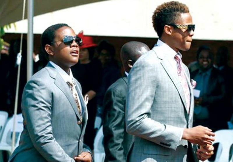 What next for the Mugabe kids?